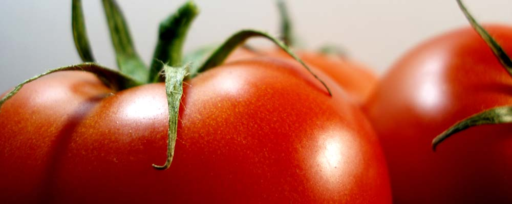 slider-portada-fondo-tomates