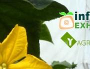 Agroinsuma estará presente en la I Feria Hortofrutícola Infoagro Exhibition 2015